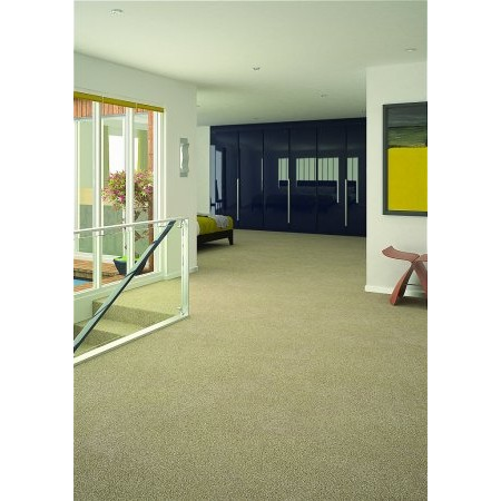 Flooring One - Vivacious Elite Carpet Collection