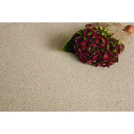 Flooring One - Waterford Carpet